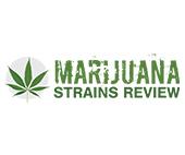 Marijuana Strains Review