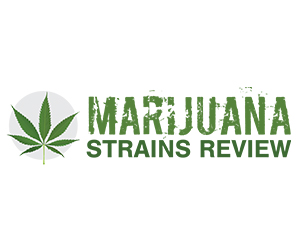 Marijuana Strains Review