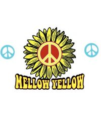 Mellow Yellow- Ft. Collins
