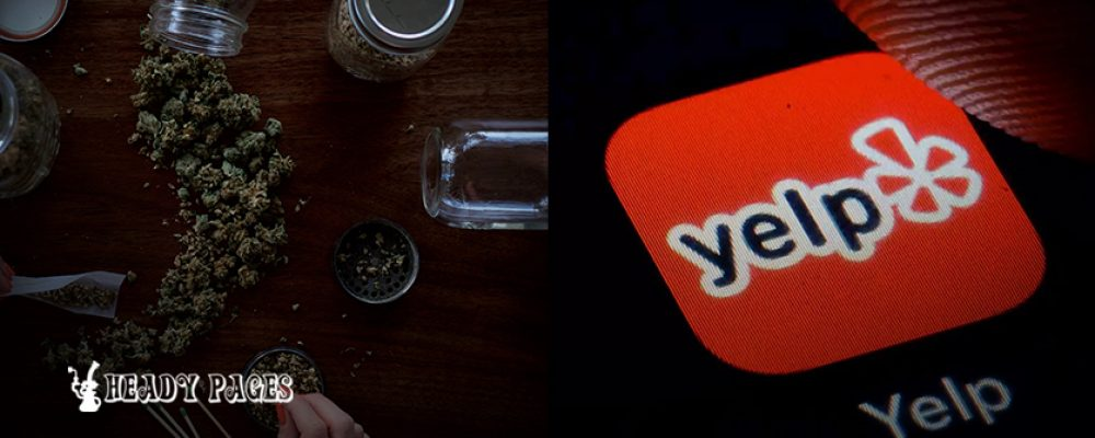 Yelp Blocks Important Advertising Features for Cannabis Businesses
